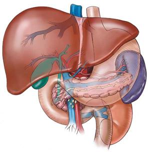 gallstones symptoms shingles